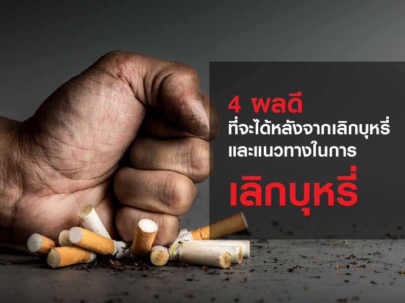 https://kardinalthailand.com/
